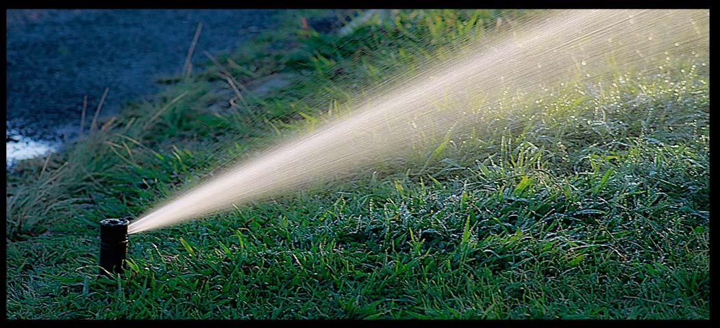 mantenimiento de jardines Extremadura precios